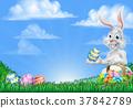 Easter Bunny Rabbit Egg Hunt Background 37842789