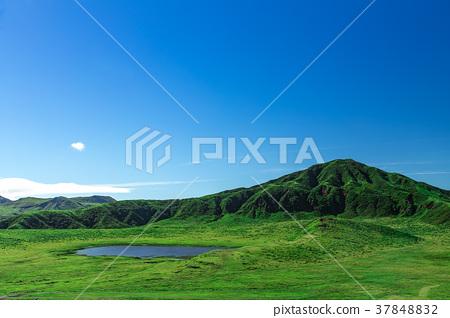 熊本的草坂 37848832