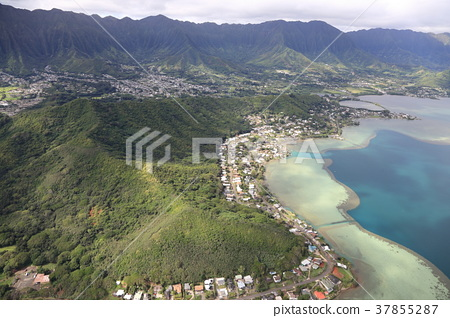 Hawaii Aerial Hair Area 37855287