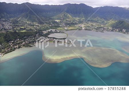 Hawaii Aerial Hair Area 37855288