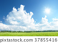 field of grass and perfect sky 37855416