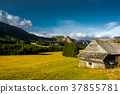 Rural Landscape with Mountains in Austria 37855781