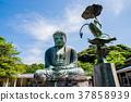 daibutsu, great statue of buddh, kamakura buddha 37858939