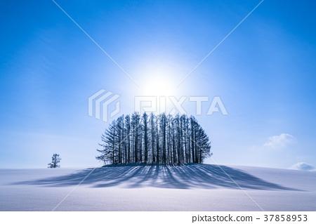 """""""北海道""""冬季溫和的七山,美麗的幻影環 37858953"""