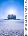 凍結的字段 柔和七之丘 冬天 37858965
