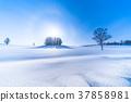 凍結的字段 柔和七之丘 美瑛町 37858981