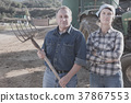Serious mature spouses farmers posing near tractor 37867553