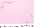 Cherry Blossoms 37875216
