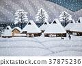 Miyama Snow 37875236