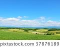 北海道夏天的藍天和美瑛的土地 37876189