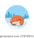 fox, snow, winter 37876653