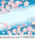 벚꽃 배경 (푸른 하늘) _1 37880909