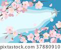 벚꽃, 꽃, 플라워 37880910