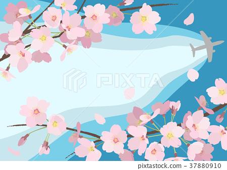 벚꽃 배경 (푸른 하늘) _2 37880910
