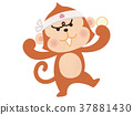 monkey, monkeys, The monkey 37881430