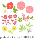 설날의 꽃 세트 37881931