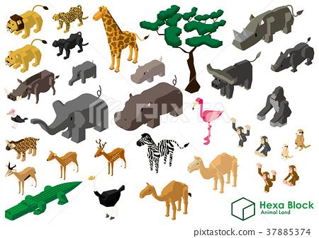 動物 獅子 長頸鹿 37885374