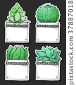 Sticker pack of succulents in pots.  37887018