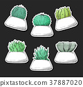Sticker pack of succulents in pots. 37887020