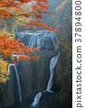 Fukuroda Falls 37894800