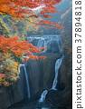 風景 袋田瀑布 瀑布 37894818