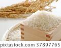 精米 稻穗 量测容器 37897765