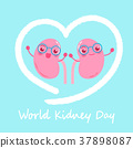world kidney day concept 37898087