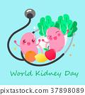 world kidney day concept 37898089