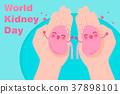 world kidney day concept 37898101