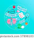 world kidney day concept 37898103