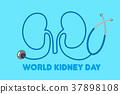 world kidney day concept 37898108
