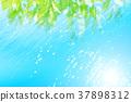 自然 樹葉 葉子 37898312