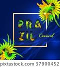 Brazil carnival celebration letter party element 37900452