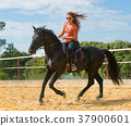 riding girl and horse 37900601