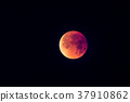 Super Blue Blood Moon 37910862