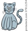 cat,cartoon,illustration 37911254