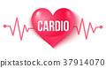 หัวใจ,สุขภาพ,ชีพจร 37914070