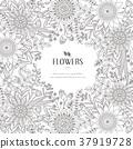 splendid flower frame 37919728