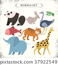 abstract, adorable, animals 37922549