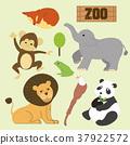 adorable animals set 37922572