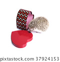 Hedgehog with empty gift box in red heart shape. 37924153