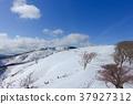 積雪 雪山 龍岳 37927312