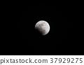 달, 일본, 재팬 37929275