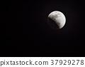 Moon 37929278