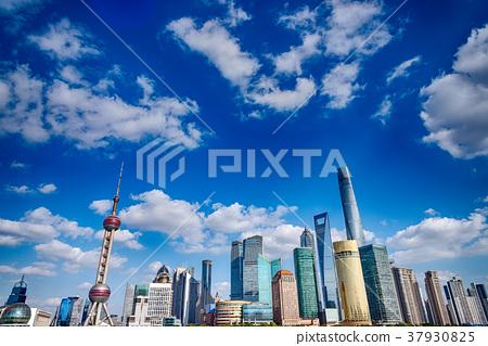 中國,上海,東浦新區的風景 37930825