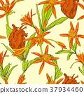 花朵 花 花卉 37934460