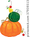Harvest, fruit and berries vector illustration  37939313