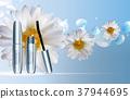 Fashion Design Makeup Cosmetics Product  Templat 37944695