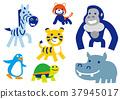 動物 生物 活的東西 37945017