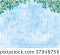 아오바, 잎, 배경 37946756